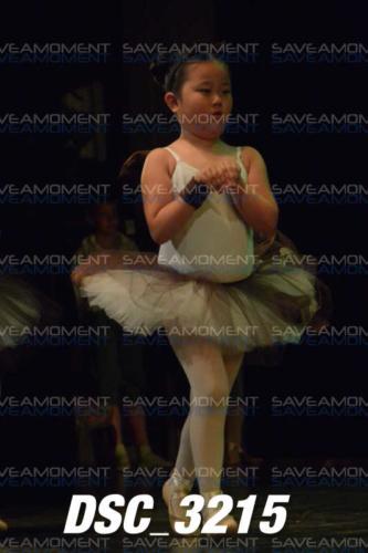 Protetto: Centro di Danza – Galleria 17