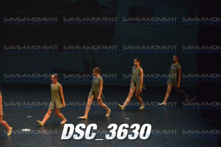 Protetto: Centro di Danza – Galleria 19