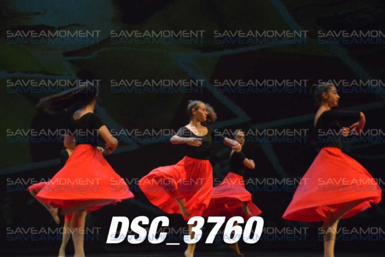 Protetto: Centro di Danza – Galleria 22